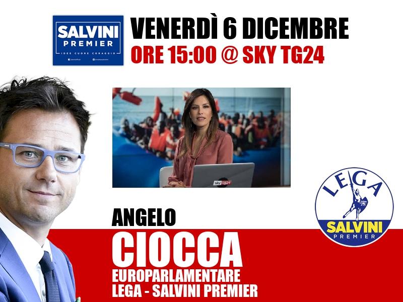 Angelo Ciocca a Timeline (Sky TG24)